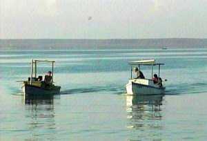Inventario de los saberes tecnoproductivos tradicionales de pesca de la comunidad marinera de Reina - Pedro Ernesto Yero León